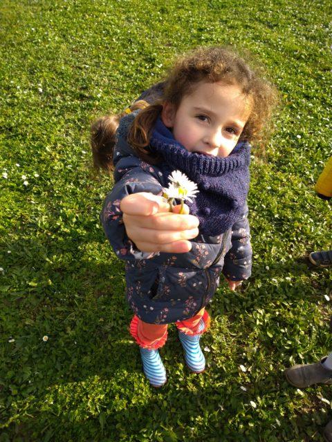 Cache cache dans l'arboretum et cueillette de marguerites sur le chemin du retour ce mercredi avec les minions et les fripouilles (MS et GS)